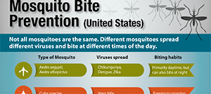 Alert and Prevention Measures for Mosquito borne virus EEE